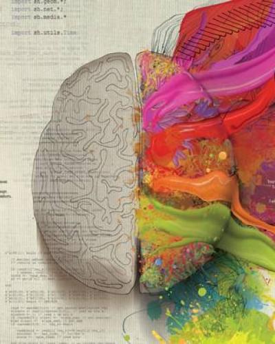 大脑法则:人脑那么Diao,你知道么?