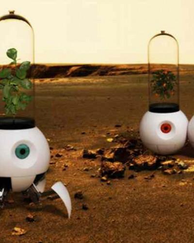 我们是不是从火星飘过来的?