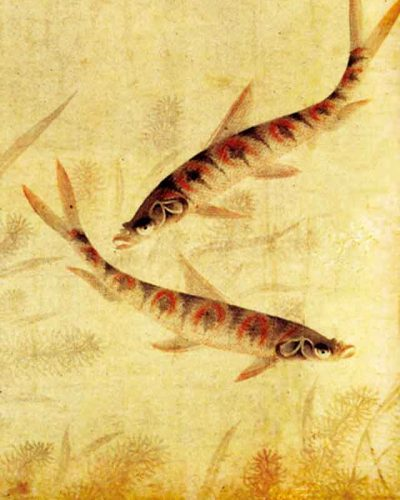 周东卿《鱼乐图》——大都会博物馆游记